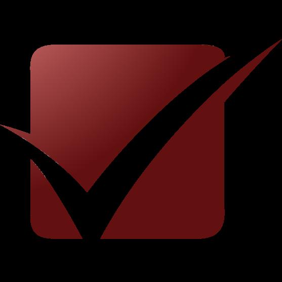 Passit Logo Icon