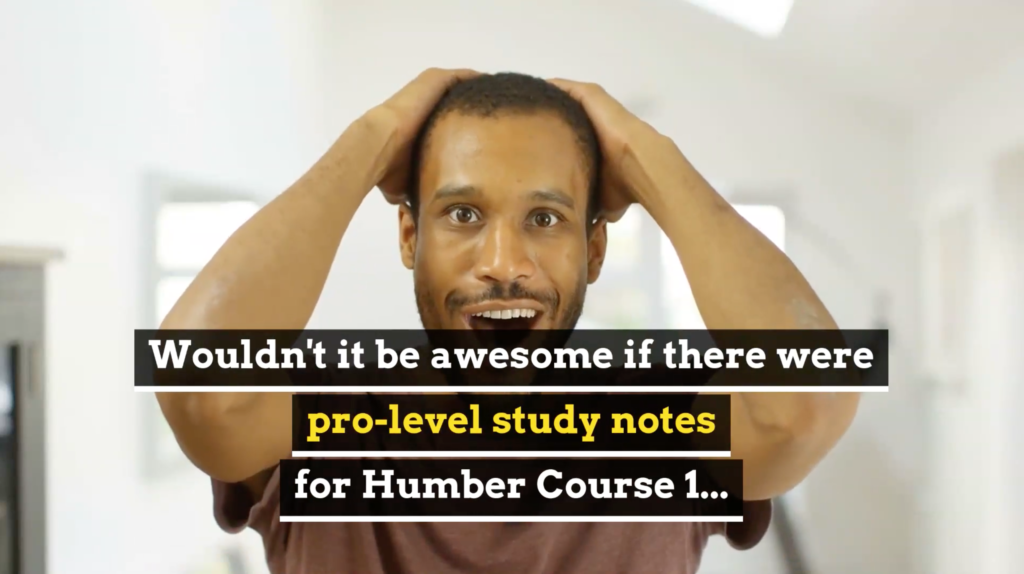 Passit Study Buddy Notes for Humber Course 1